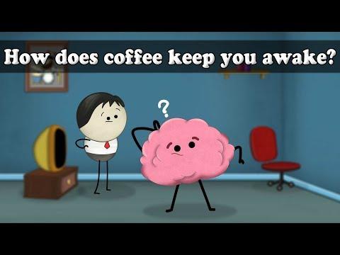 Caffeine - how does coffee keep you awake? | #aumsum #kids #science #education #children