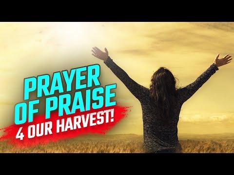 Coming harvest! hannah's powerful prayer 🙌🏿 power in the prayer room